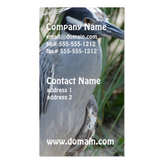 Yellow Crowned Night Heron Business Card