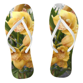 Yellow Cymbidium Orchids Thongs