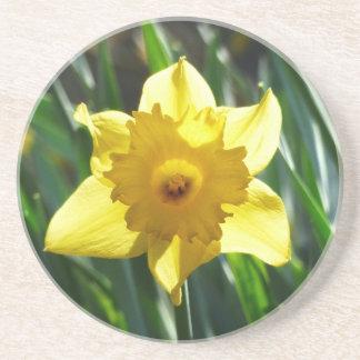 Yellow Daffodil 02.2_rd Coaster