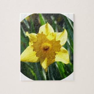 Yellow Daffodil 02.2_rd Jigsaw Puzzle