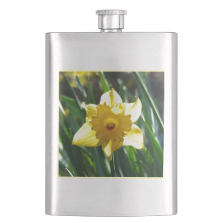 Yellow Daffodil 02.3. Hip Flask