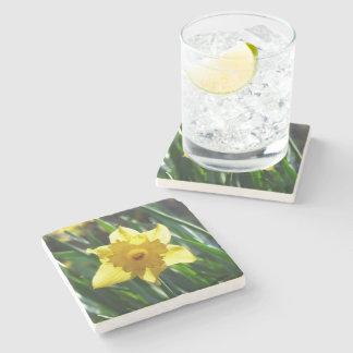 Yellow Daffodil 02.3. Stone Coaster