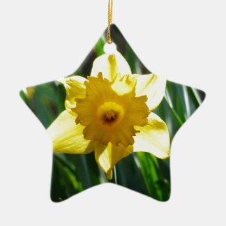Yellow Daffodil 03.0.g Ceramic Star Decoration