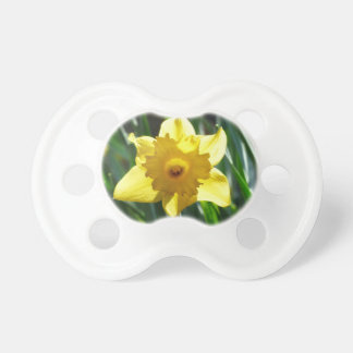 Yellow Daffodil 03.0.g Dummy