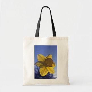 Yellow Daffodil, Sidelit flowers Bags