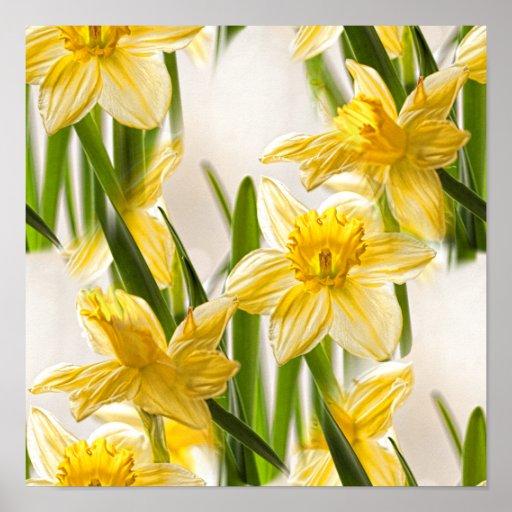 Yellow Daffodil Wallpaper Pattern Posters