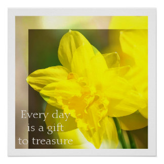 Yellow Daffodils Abstract Poster