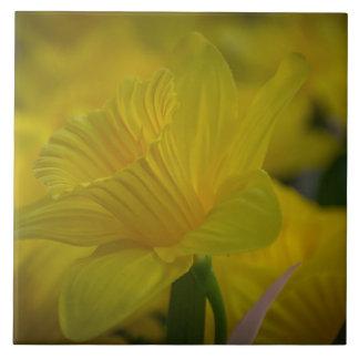 Yellow daffodils ceramic photo tile