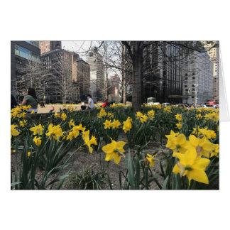 Yellow Daffodils Columbus Circle NYC Spring Flower Card