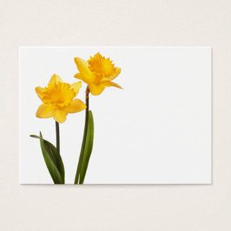 Yellow Daffodils on White - Daffodil Flower Blank Business Card