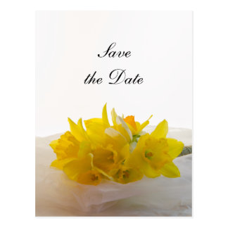 Yellow Daffodils on White Wedding Save the Date Postcard