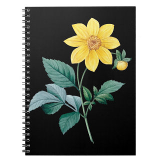 Yellow dahlia black notebook