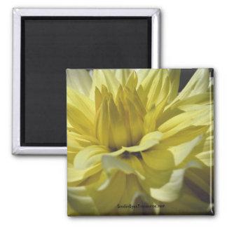 Yellow Dahlia Macro Flower Photography Magnet