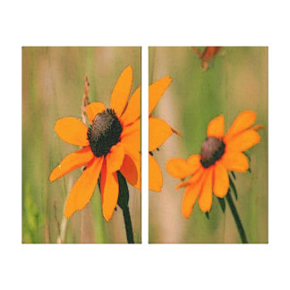 Yellow Daisies Stretched Canvas Prints
