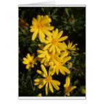 Yellow Daisies Card