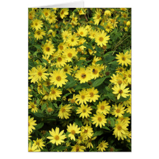 Yellow Daisies Greeting Card