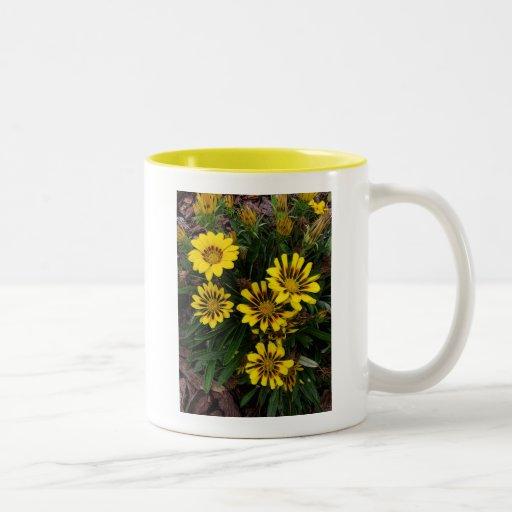 Yellow Daisies Coffee Mugs