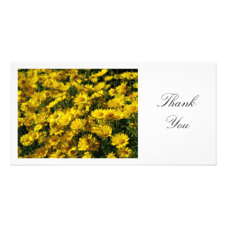 Yellow Daisies - Thank You Photo Cards