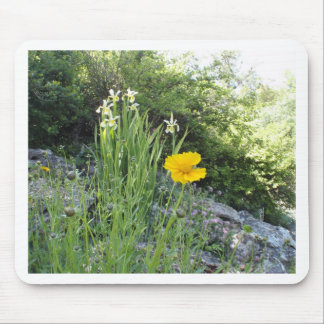 Yellow Daisy And White Irises Mouse Pads