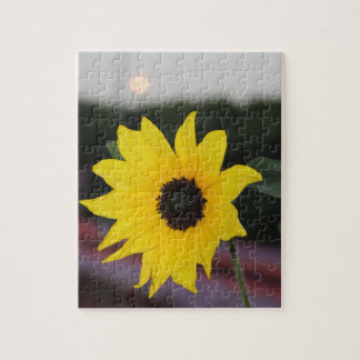 Yellow Daisy at Sunset Jigsaw Puzzle