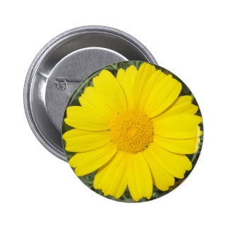 Yellow Daisy button