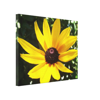 Yellow Daisy Stretched Canvas Print