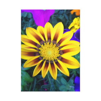 Yellow Daisy Delight  Flower Canvas 12 x 12