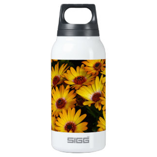 Yellow daisy flowers in spring 0.3 litre insulated SIGG thermos water bottle