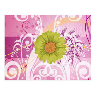 Yellow Daisy Flowers Pictures Design Postcard