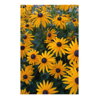Yellow daisy garden flowers. stationery