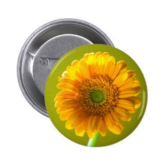 Yellow Daisy Gerbera Flower Button