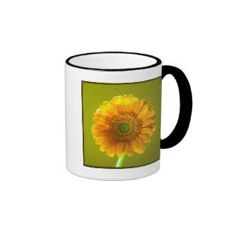 Yellow Daisy Gerbera Flower Coffee Mugs