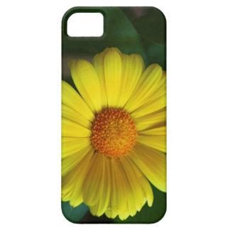 Yellow daisy iPhone 5 cases