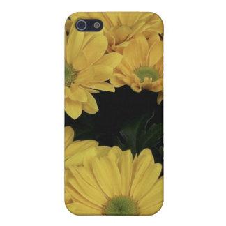 Yellow Daisy iPhone Case iPhone 5 Case