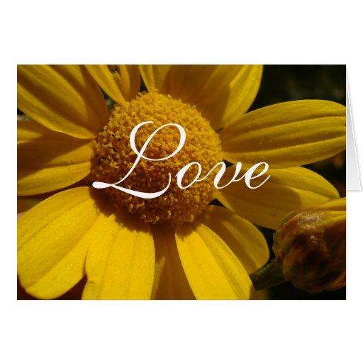 Yellow Daisy Love Card