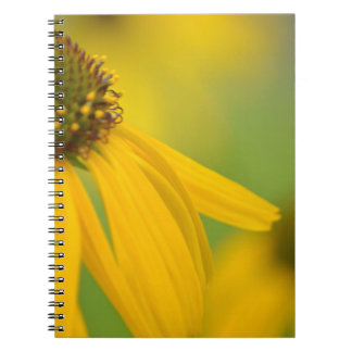 Yellow Daisy Notebook Garden Journal