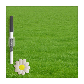 YELLOW DAISY SPRING TIME FLOWER ON GREEN GRASS DRY ERASE BOARDS