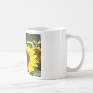 yellow daisy with butterfly coffee mugs