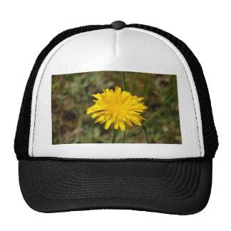 Yellow Dandelion Trucker Hat
