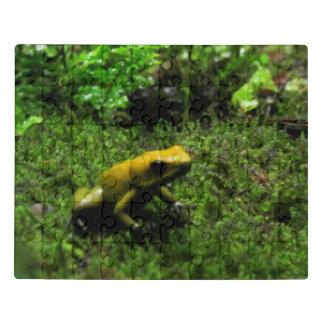Yellow Dart Frog Jigsaw Puzzle