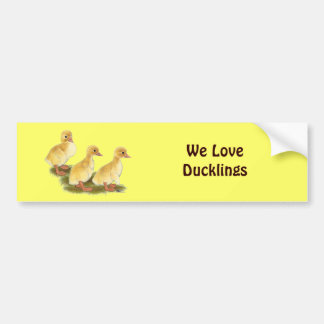 Yellow Ducklings Car Bumper Sticker