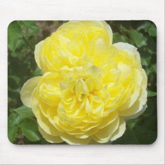 Yellow English Rose Mousepad