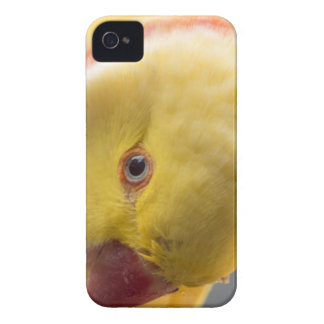 Yellow Fellow Case-Mate iPhone 4 Case