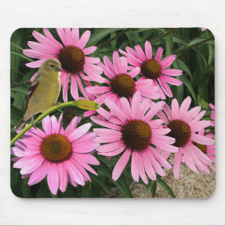 Yellow Finch and Cone Flowers - Mouse Pad
