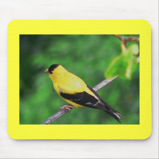 Yellow Finch Mouse Pad