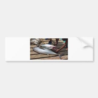 yellow fins tuna bumper sticker