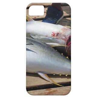 yellow fins tuna iPhone 5 case