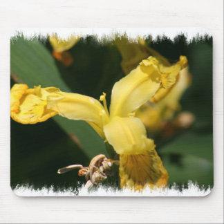 Yellow flag Wild Iris Mousepad