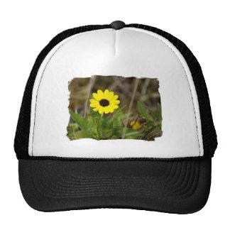 Yellow Florida Wildflower Mesh Hats
