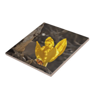 Yellow flower ceramic tile